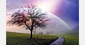 في تأويل رؤيا الملائكة : الجزء الاول-تفسير الاحلام لابن سيرين